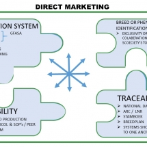 direct-marketing-relationship-between-production-system-and-genetics