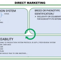 direct-marketing-relationship-between-production-system-and-genetics-3