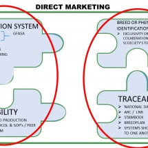 drect-marketing-relationship-between-production-system-and-genetics-2